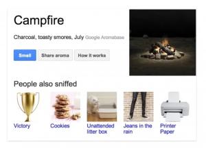 Google Nose - Campfire