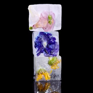ice with flowers